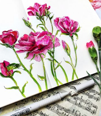 space364-sketching-markerami-sketchbook-online-kurs-sketch-roses-flowers-ztveti